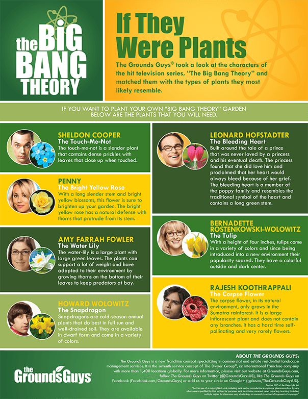 If the Big Bang Theory characters were flowers infographic